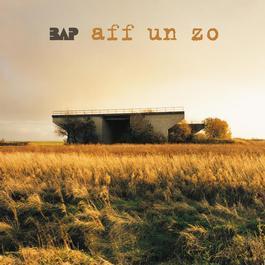 Aff Un Zo 2005 BAP
