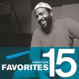 Favorites 2008 Marvin Gaye