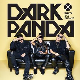 ฟังเพลงอัลบั้ม DARK PANDA