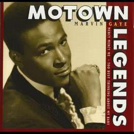 Motown Legends: Mercy Mercy Me 2008 Marvin Gaye