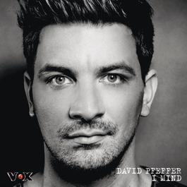 I Mind 2011 David Pfeffer
