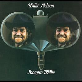 You Look Like The Devil 1973 Willie Nelson