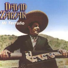 Mi Terruño 2002 David Zaizar