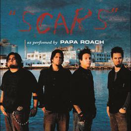 Scars 2008 Papa Roach