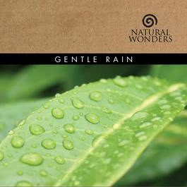 Gentle Rain 2008 David Arkenstone