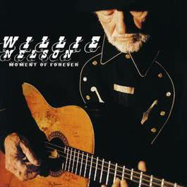 Moment Of Forever 2008 Willie Nelson
