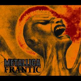 Frantic 2003 Metallica