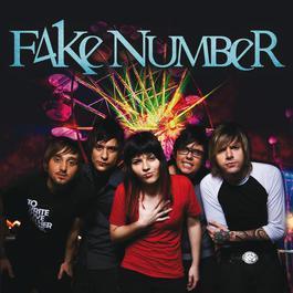 Fake Number 2010 Fake Number