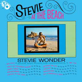 Stevie At The Beach 2014 Stevie Wonder