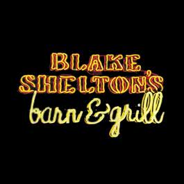 Love Gets In The Way (Album Version) 2004 Blake Shelton