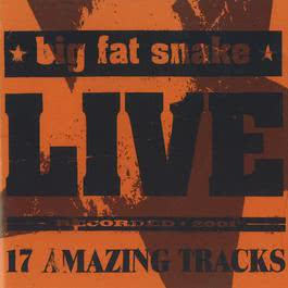 Live (17 Amazing Tracks) 2007 Big Fat Snake