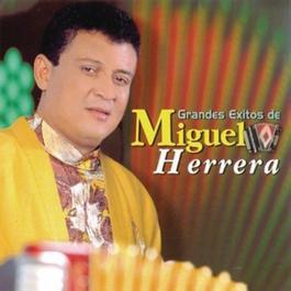 Grandes Exitos De Miguel Herrera 1994 Miguel Herrera