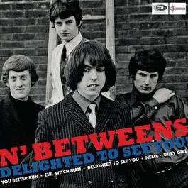 Delighted To See You 2007 N'Betweens