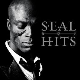 Hits 2013 Seal