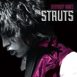 Could Have Been Me 2014 The Struts