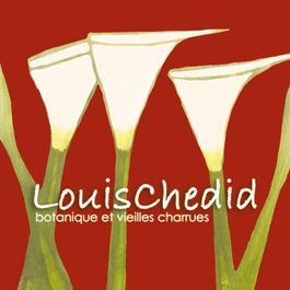 Botanique Et Vielles Charrues 2003 Louis Chedid