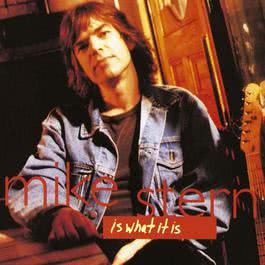 A Little Luck 1994 Mike Stern