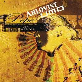 Mister Blues 2010 Pepe Ahlqvist