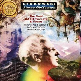 Leopold Stokowski The Magician 2000 Stokowski