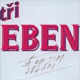 Ja na tom delam 2008 Bratri Ebenove
