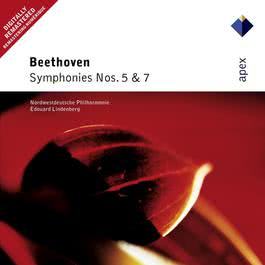 Beethoven : Symphony No.7 in A major Op.92 : III Presto 2004 Edouard Lindenberg