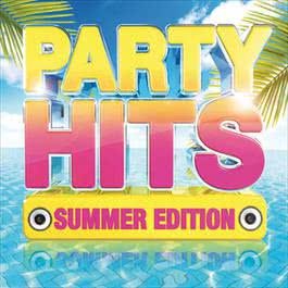 Party Hits: Summer Edition 2013 Various Artists