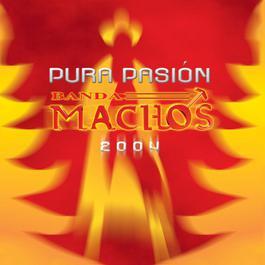 Los gustos 2004 Banda Machos