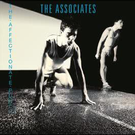 The Affectionate Punch 2005 The Associates