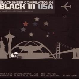 Black In USA 2004 Various Artists