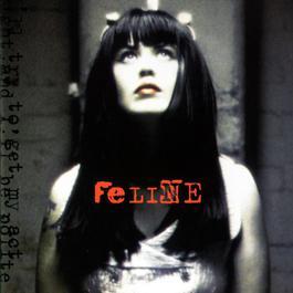 Feline 2008 Feline