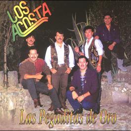 Acosta mix / a) Una chia esta llorando - 2001 Los Acosta