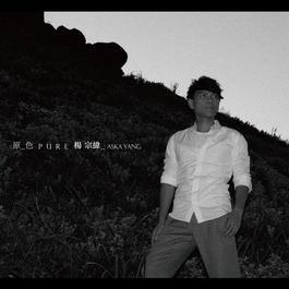 原色 2012 楊宗緯