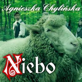 Niebo 2011 Agnieszka Chylinska