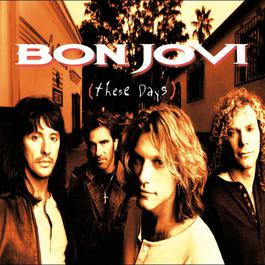 These Days 2010 Bon Jovi