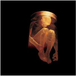 Nothing Safe-Best Of The Box 1999 Alice In Chains