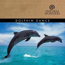 Dolphin Dance 2008 Brian Hardin