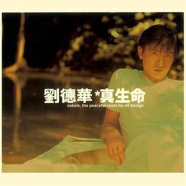 Zhen Sheng Ming 1997 Andy Lau