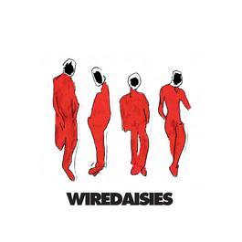 Wire Daisies 2007 Wire Daisies