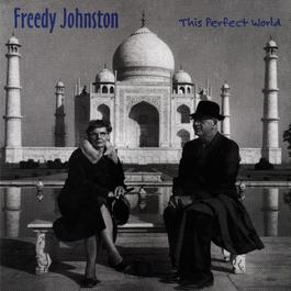 This Perfect World 2009 Freedy Johnston