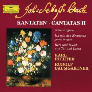 Festival Strings Lucerne的專輯Bach: Cantatas II