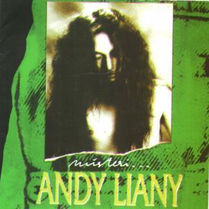 Misteri dari Andy Liany