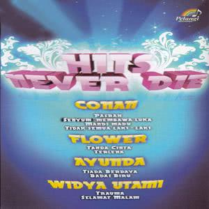 Various Artists的專輯Hits Never Die