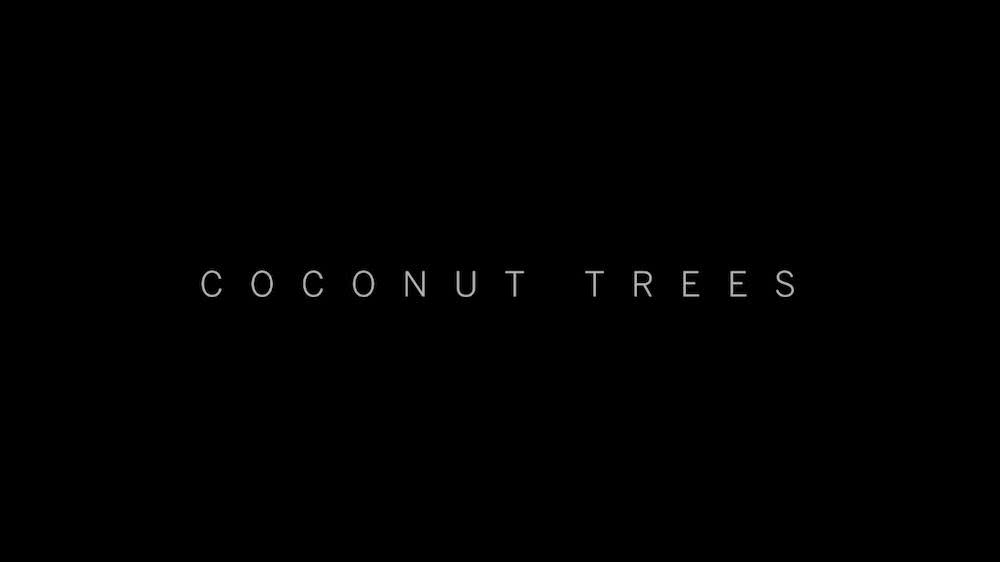 J.S.K XXVI - Coconut Trees