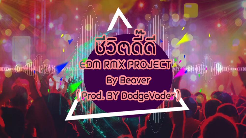 ชีวิตดี๊ดี (EDM RMX Project by Beaver) [MV]