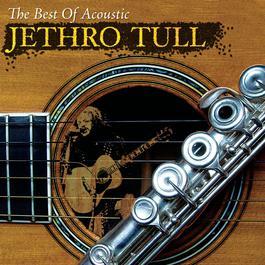 The Best Of Acoustic Jethro Tull 2007 Jethro Tull
