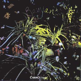 Banyan 1997 Banyan