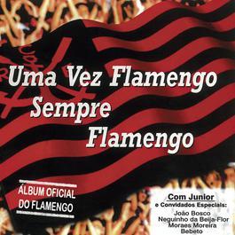 Uma Vez Flamengo, Sempre Flamengo 2011 Junior