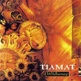 Wildhoney 1994 Tiamat