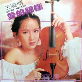 愛的錦標 1979 王曉晴