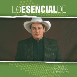 Lo Esencial De... 2006 David Lee Garza